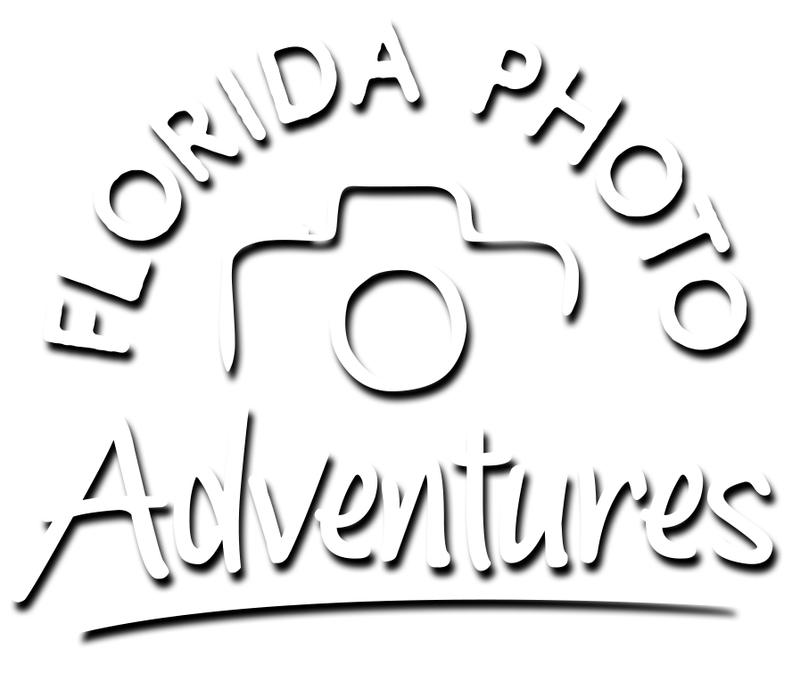 Florida Photo Adventures logo